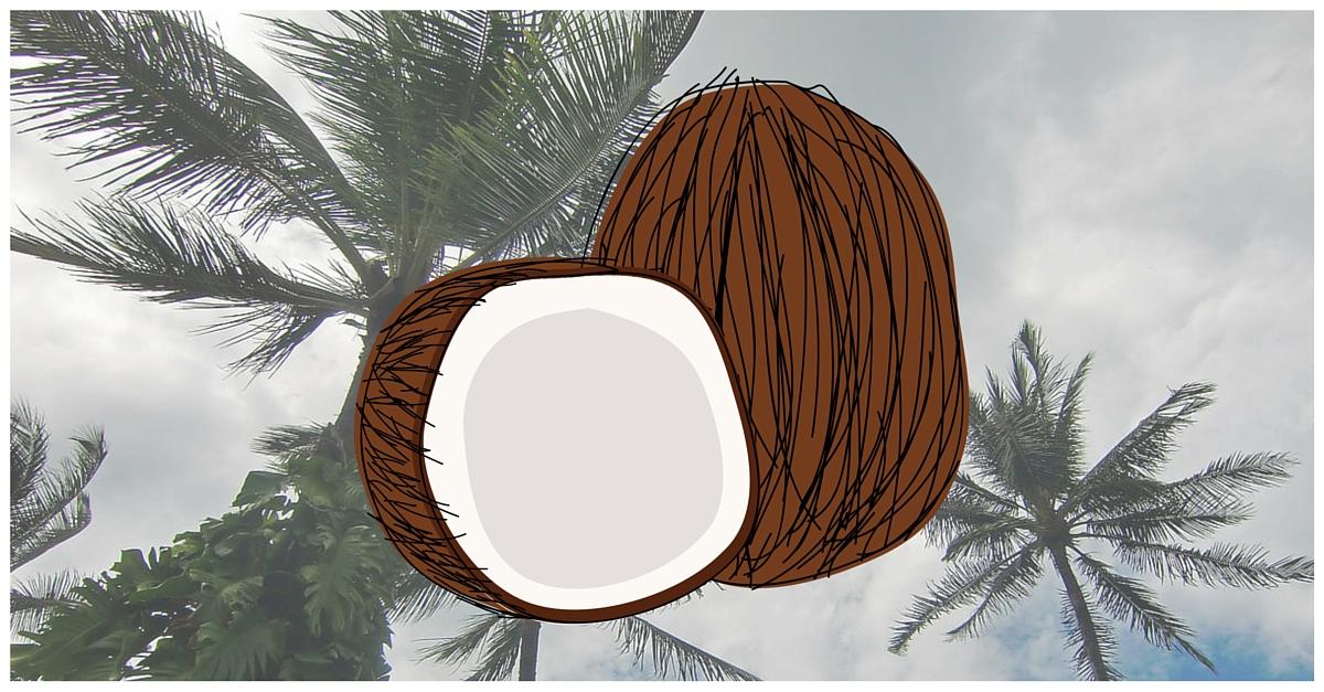 Kokosöl gesund Superfood