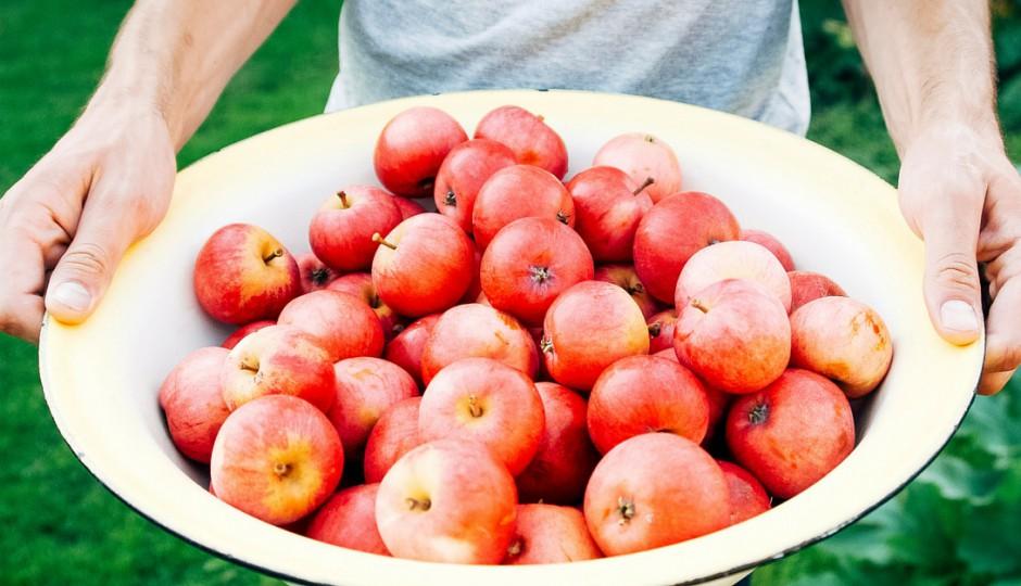 Gesunde Ernährung kann heilen